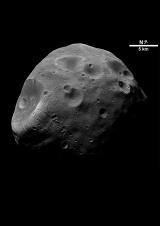 Das Profilbild von phobos